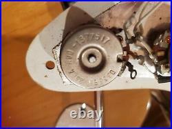 1975 Fender Stratocaster withOHSC